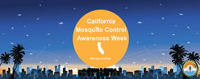 2018 Mosquito Awareness Week Flyer Cover Picture